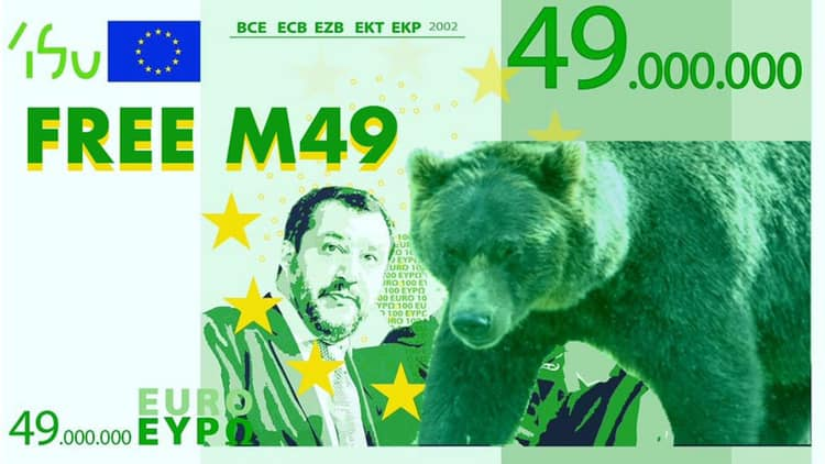 Salvini vs M49