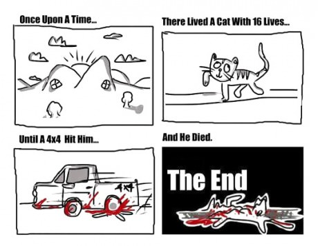 The cat with 16 lives