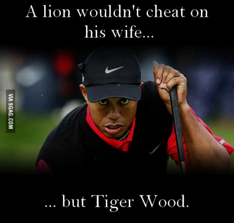 A lion wouldn't cheat on his wife... but Tiger Wood
