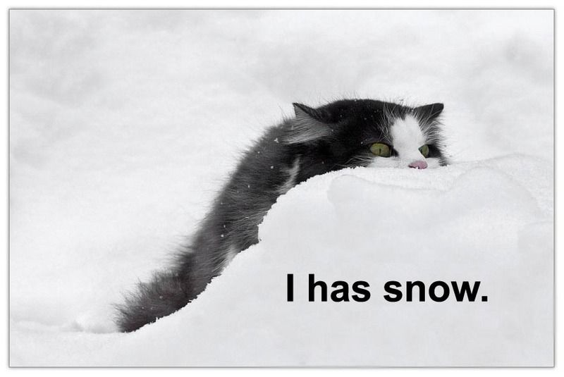 I has snow