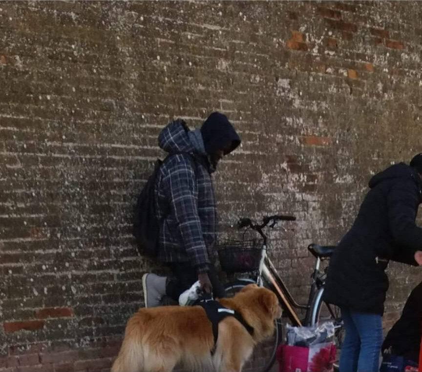 Un signore porta a spasso il cane e...